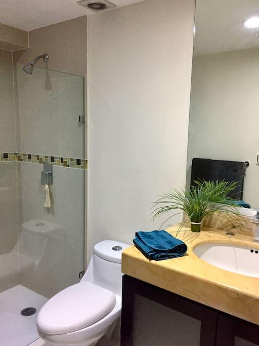 Guest Bathroom  // Baño De Invitados