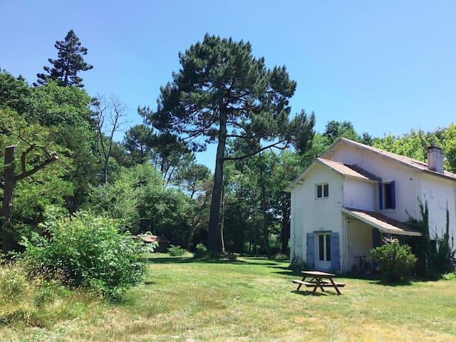 Chambre Léon/Pitéou