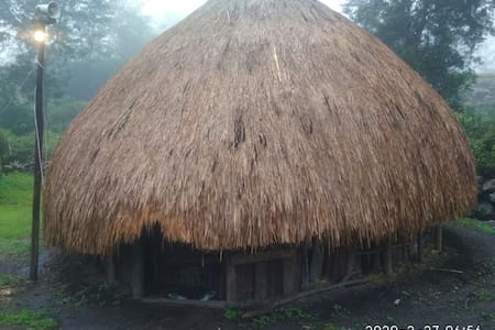 Wamena traditional house