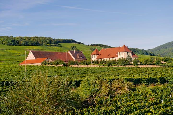 Magnifique chambre au coeur des vignes