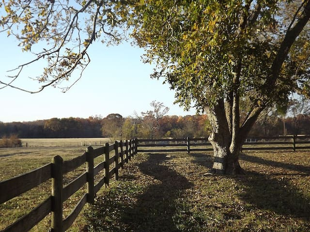 Ranch House with 250 acres to explore