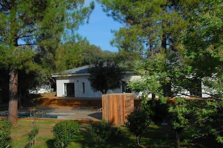 Villa d'architecte contemporaine - SAINTE LUCIE DE PORTO VECCHIO