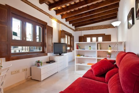 Charming loft in Plaza Redonda -3 - València