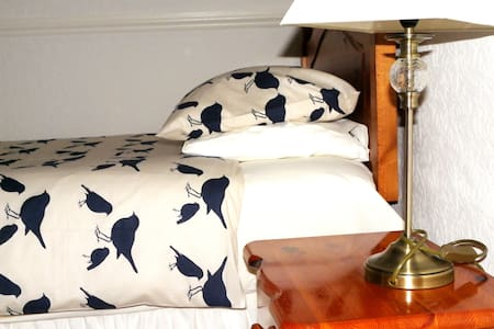 Budget Room Dover, free park & WiFi - Dover - Bed & Breakfast