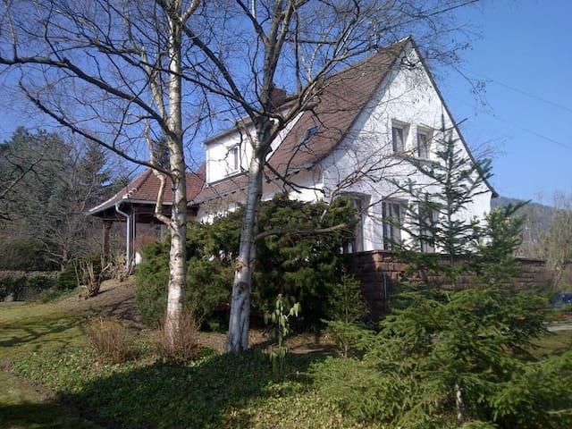 Villa de charme Alsace - Riquewihr - Riquewihr - Casa