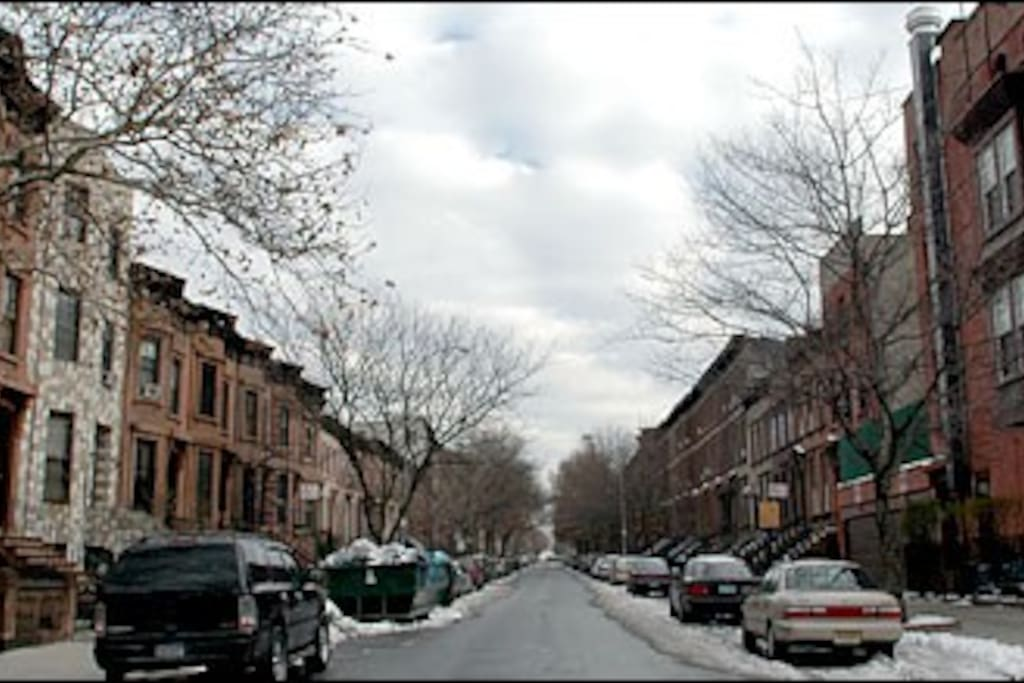 rows of classic 1890s brownstones
