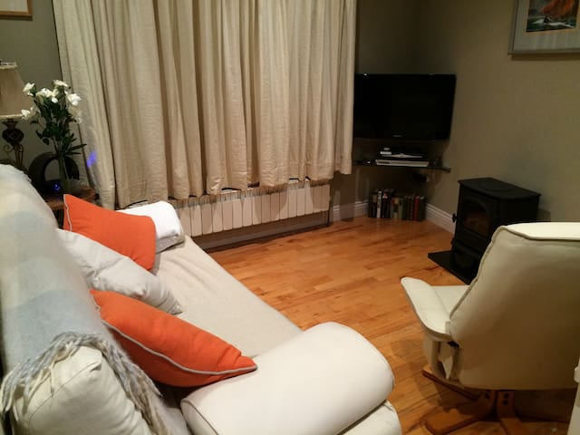 1 Bed Apartment near city centre - Rathmines
