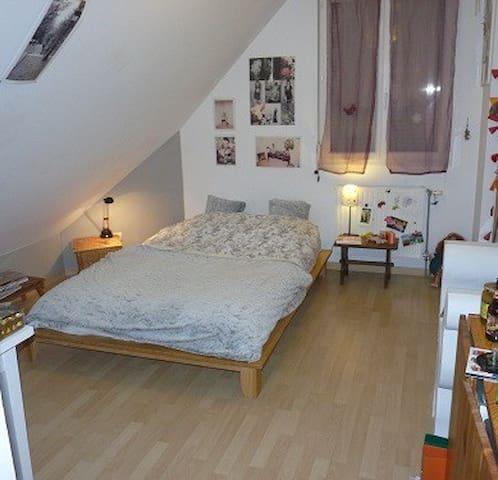 Chambre pour les 24h - La Chapelle-Saint-Aubin - House