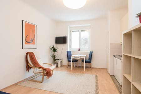 Cozy Studio in the City Centre  - Vienna - Apartmen