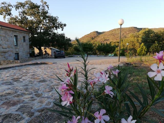 Quinta dos Carvalhais-Agroturismo