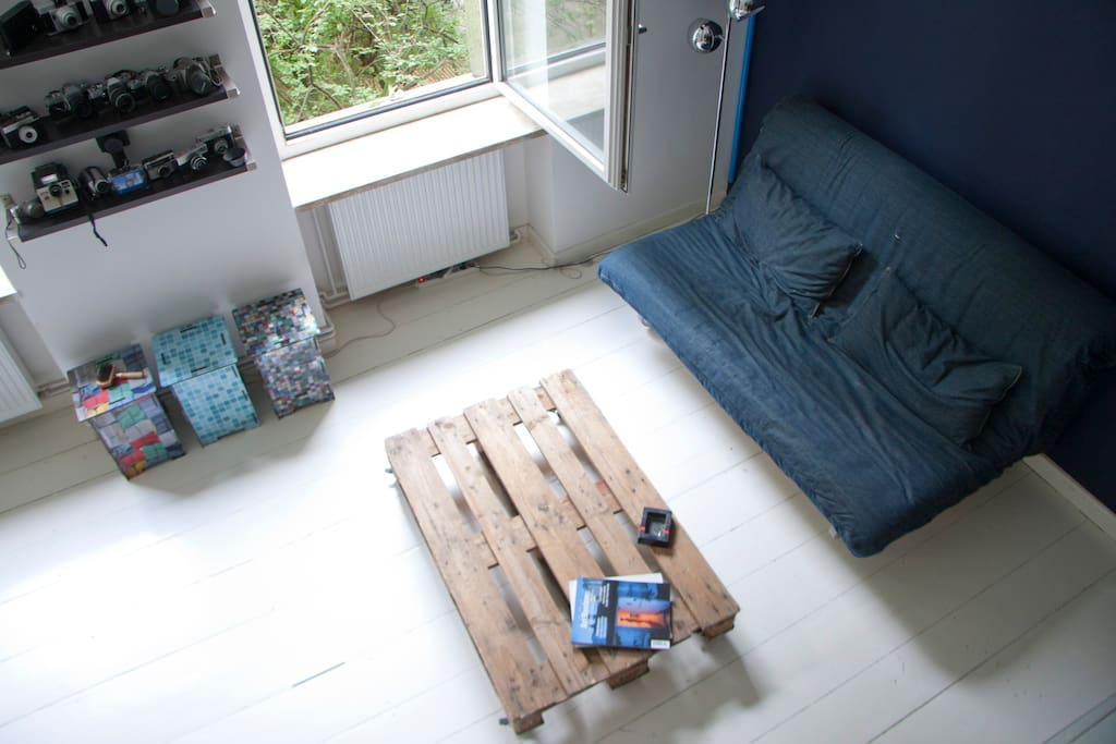 my comfortable sleep sofa