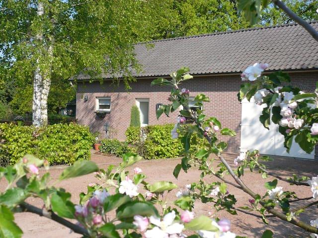 Landelijke B&B 'De Schipbeek' - Bathmen - Daire
