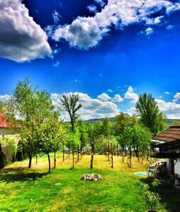 Pál Kúria - Radvaň nad Dunajom