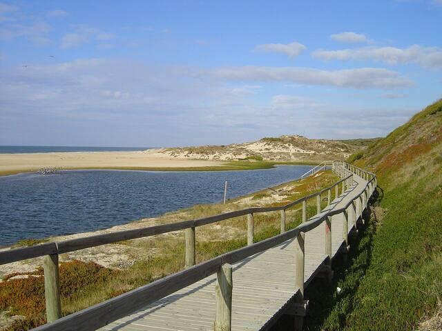 Praia Velha de Praia Velha de São Pedro de Moel - 22 km    São Pedro de Moel old beach - 22km