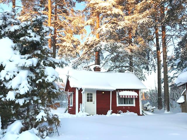 Pettsons log cabin ★ lake view ★ open fire ★ sauna