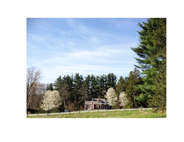 Jewel box on 1.2 acres - Wappingers Falls - Dům
