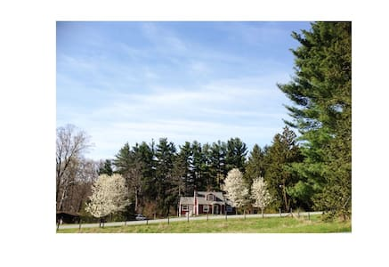 Jewel box on 1.2 acres - House