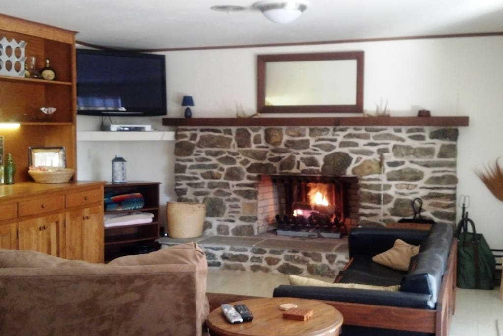 Wood fireplace with cable tv
