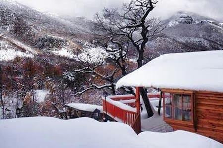 Precioso Refugio en Termas de Chillán - Vitacura
