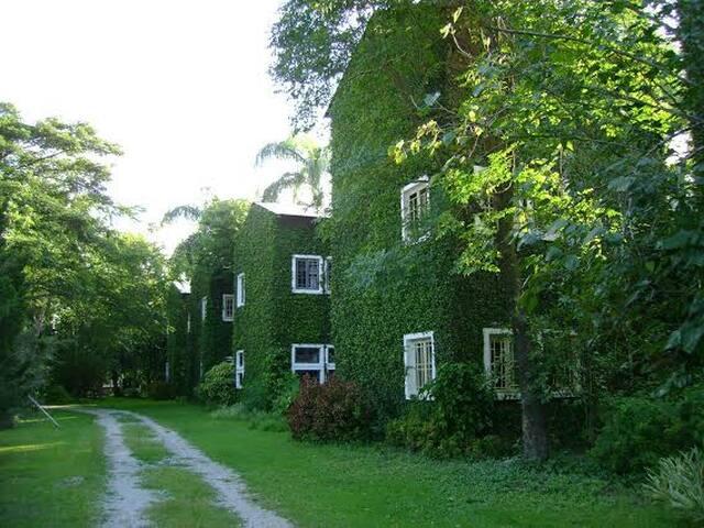 Kaomai lanna Resort - อ.สันป่าตอง