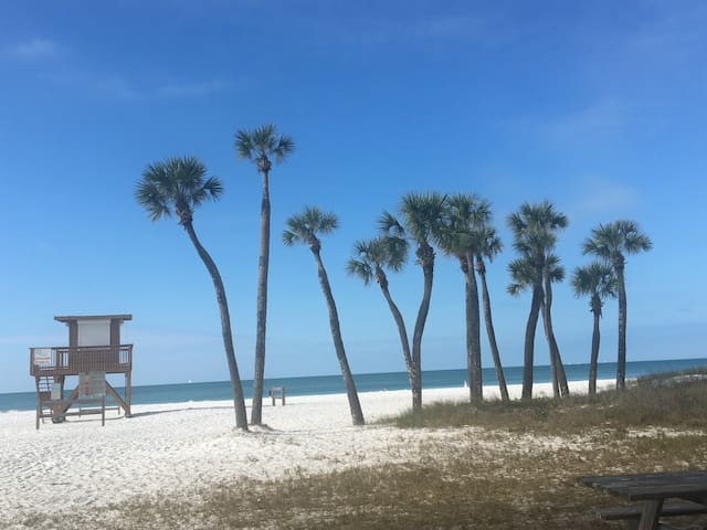 Just a few steps away on Coquina Beach
