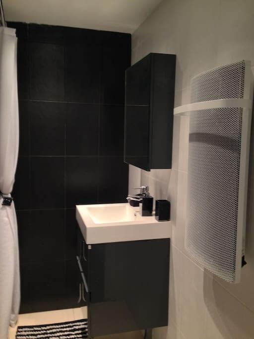 SDD, douche à l'italienne, meuble de rangement et wc + VMC