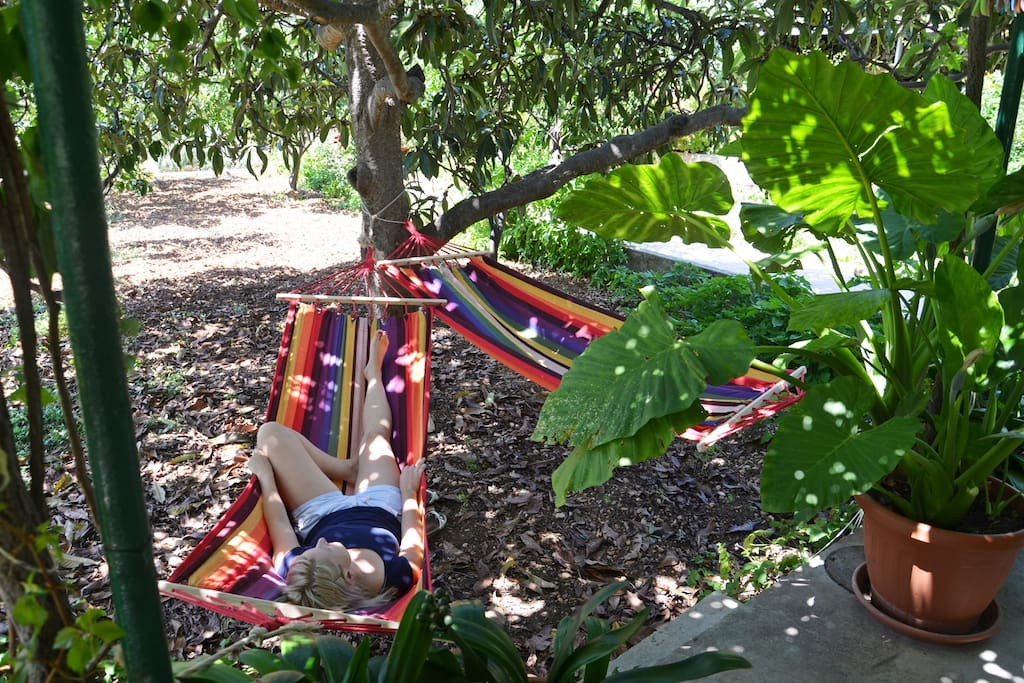 Hammocks, for lazy mornings or afternoon siesta