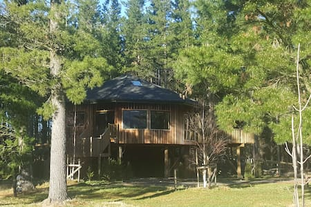 Hanmer Tree House