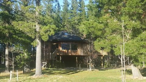 Hanmer Tree House