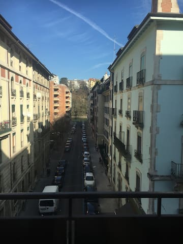 Spacious flat, view on the Rhône - Geneve - Huoneisto