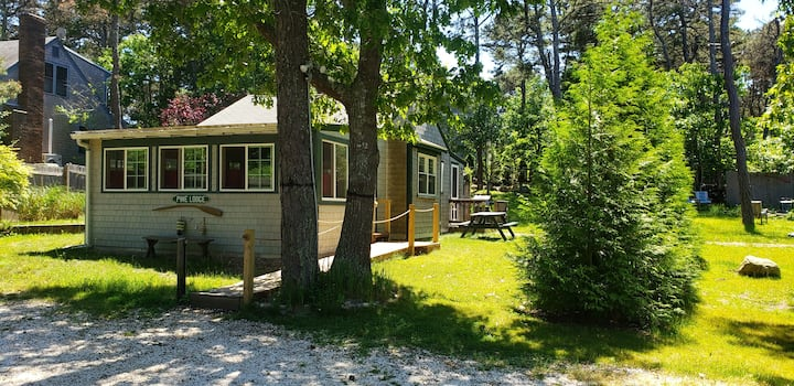 Pine Lodge - spacious and dog friendly!