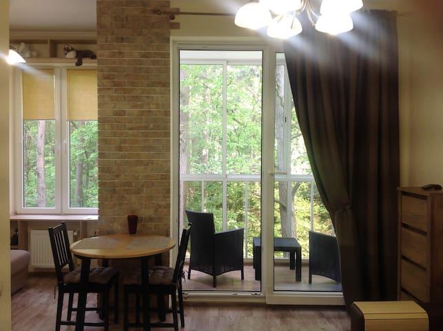 Апартаменты Александра