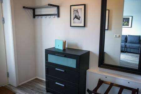 Entrance with coat rack, luggage rack, and dresser.