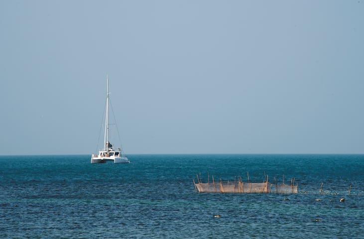 Catamaran Ruby - Trincomalee