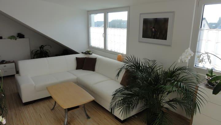 Traumhafte Dach-Studio Wohnung/ Business-Apartment