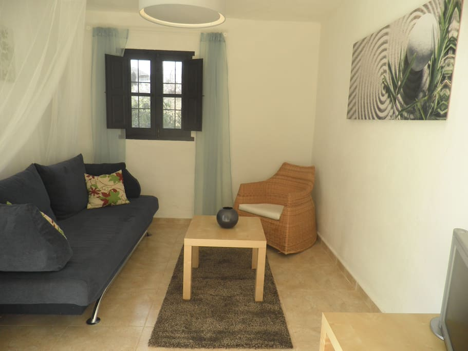 Living room has a tv/dvd and double sofa bed