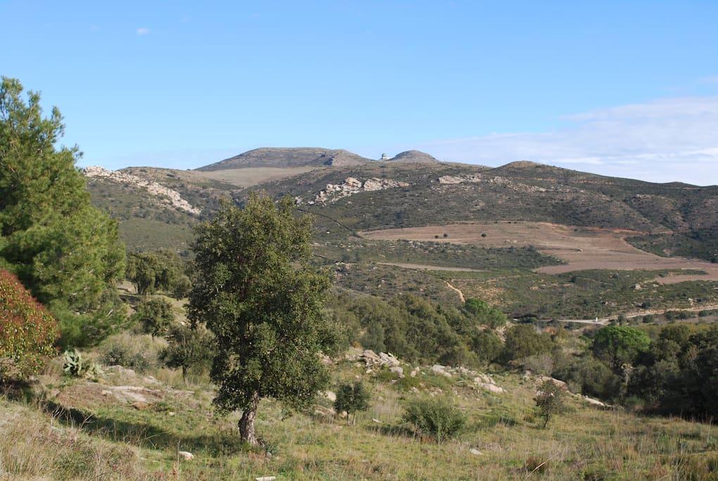 Le Parc National du Creus.