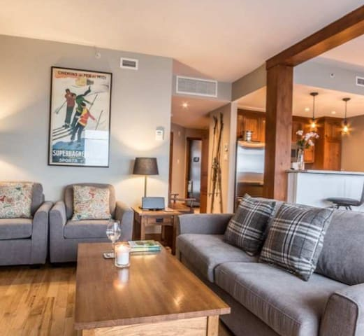 Spacious living area with Queen pull out couch