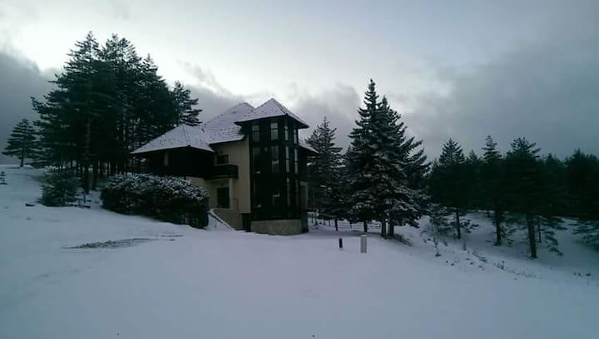 Villa Zabac - Čajetina - Villa