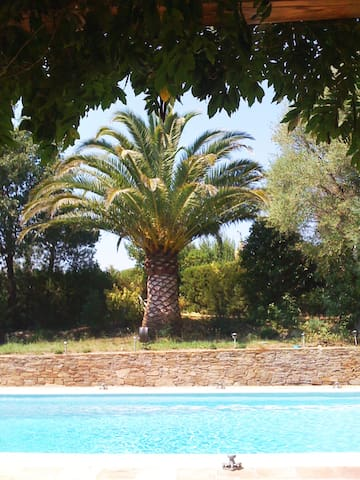 Bed and breakfast l'AgopOde