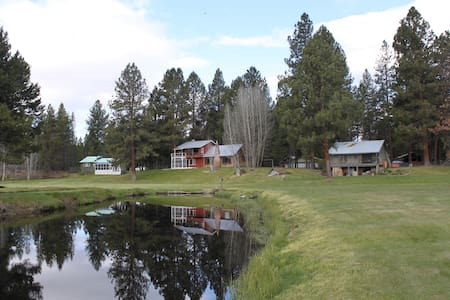 Private Cabin. 8 Acres, Fresh Air, Swimming Hole!