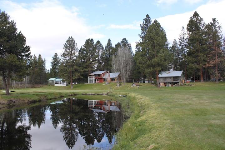 A River Runs Thru It. 8 acres & Riverfront Cabin!