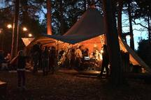 Live music nights in the tipi - at the Dell of Abernethy - inshriach for gin nights