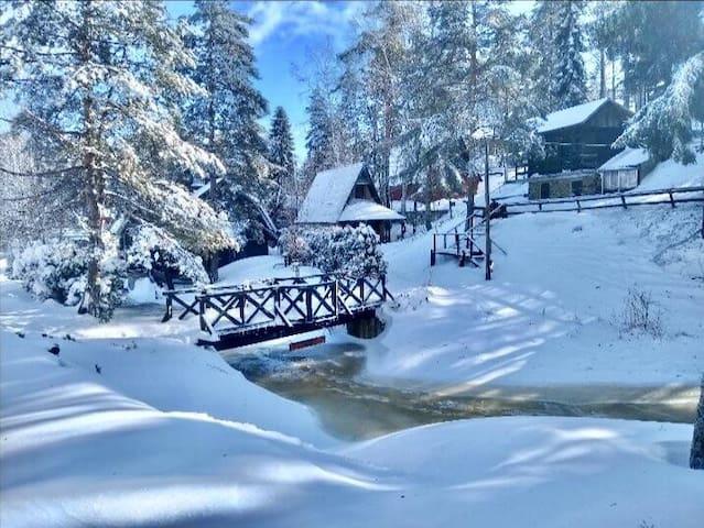 ★ Family & Friends Mountain Home ★ Divčibare