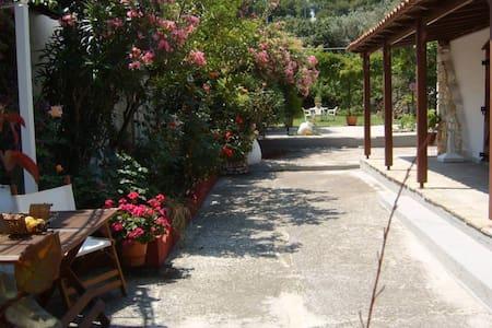 beach house with wonderful terraces - Achladias - 獨棟