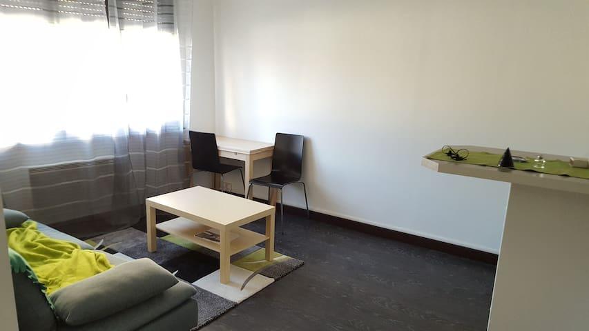 Appartement sympa et idéalement situé - Toulouse - Leilighet