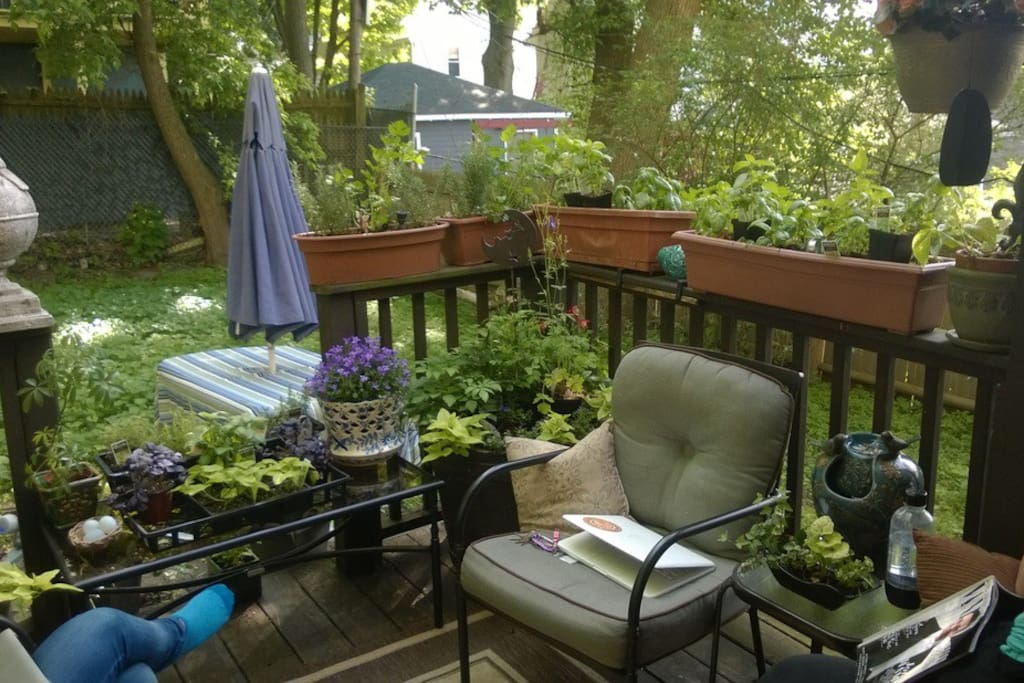Patio in backyard - enjoy in nicer weather!