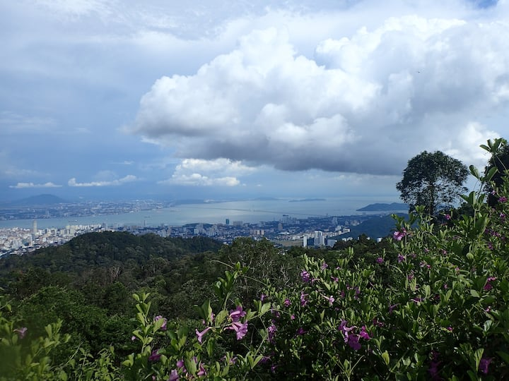View to Penang's east coast