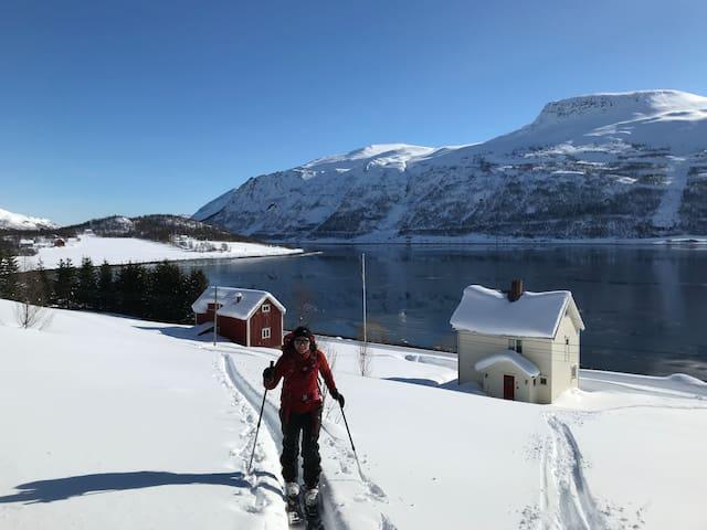 Langfjorden Alta