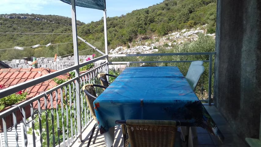 Two bedroom apartment with balcony and sea view Luka Dubrava (Pelješac) (A-14040-b)